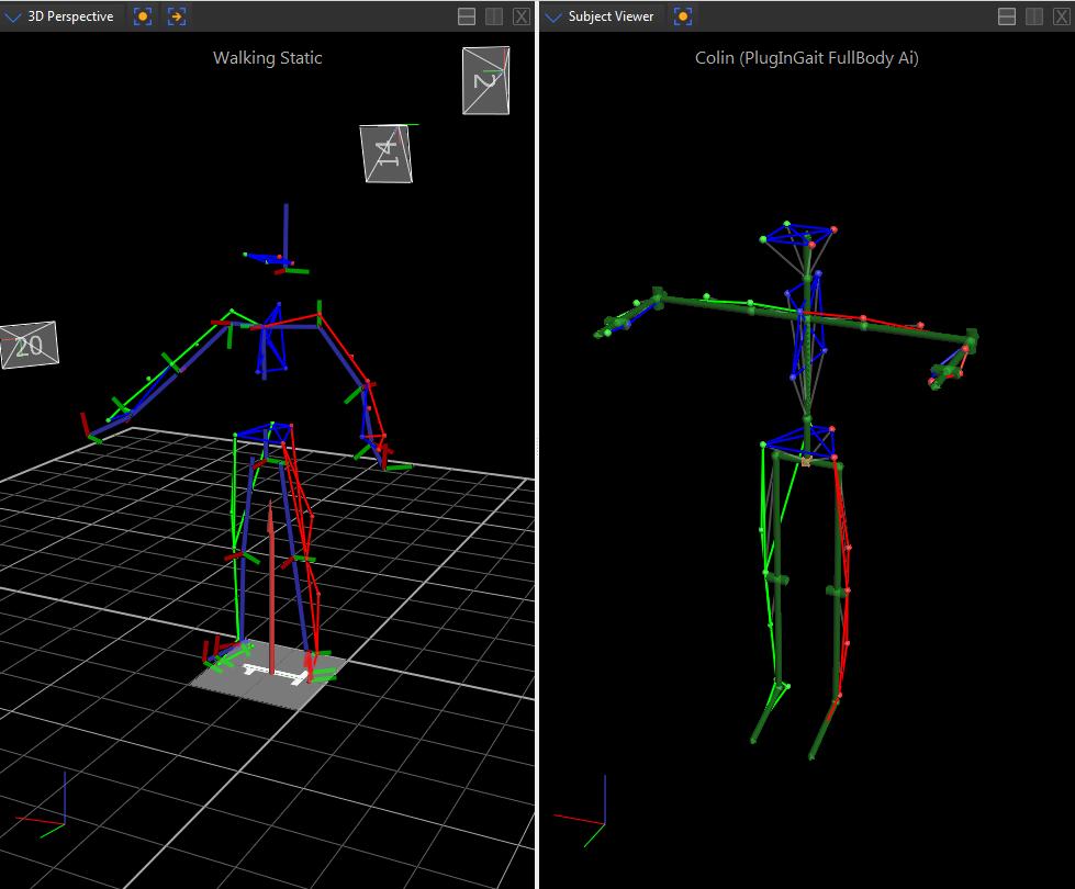 Calibrate a labeling skeleton - Nexus 2 6 Documentation - Vicon